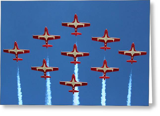 In Formation Greeting Card by Randy Hall