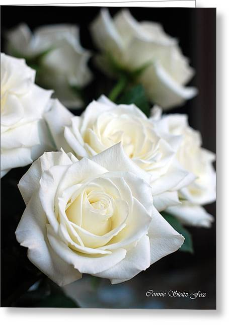 In My Dreams - White Roses Greeting Card by Connie Fox