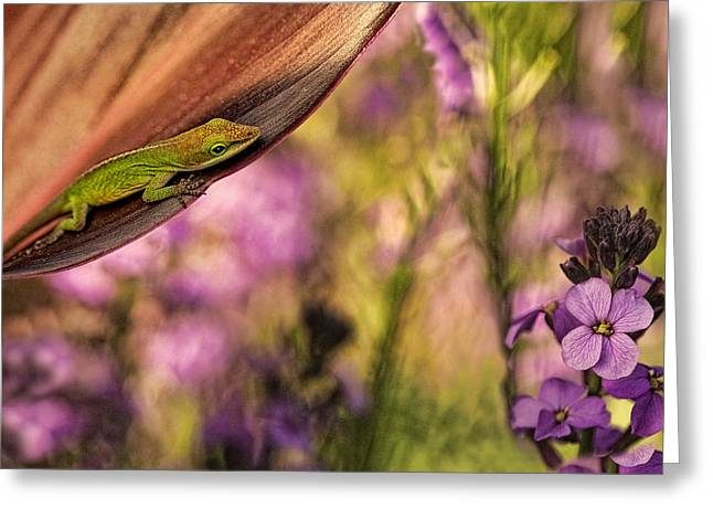 In My Garden Greeting Card by Linda D Lester