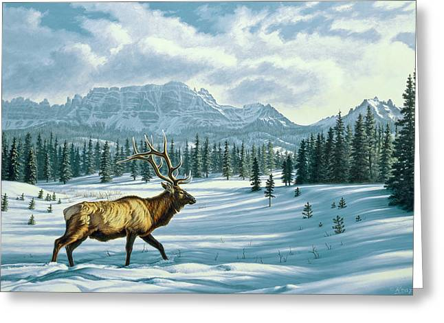 In The Absarokas - Elk Greeting Card