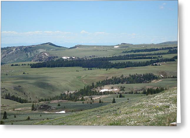 In The Bighorn Mountains Greeting Card