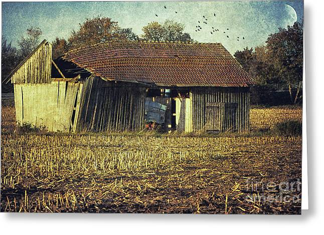 In The Country Greeting Card by Jutta Maria Pusl