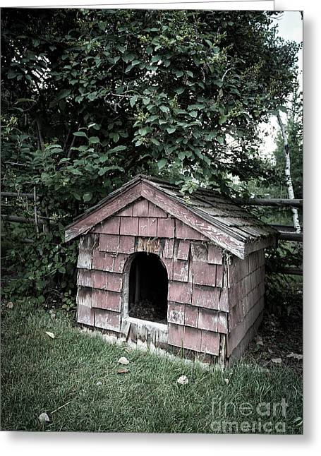 In The Dog House Greeting Card