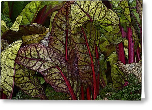 In The Garden - Red Chard Jungle Greeting Card