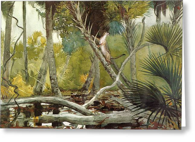 In The Jungle Greeting Card by Winslow Homer
