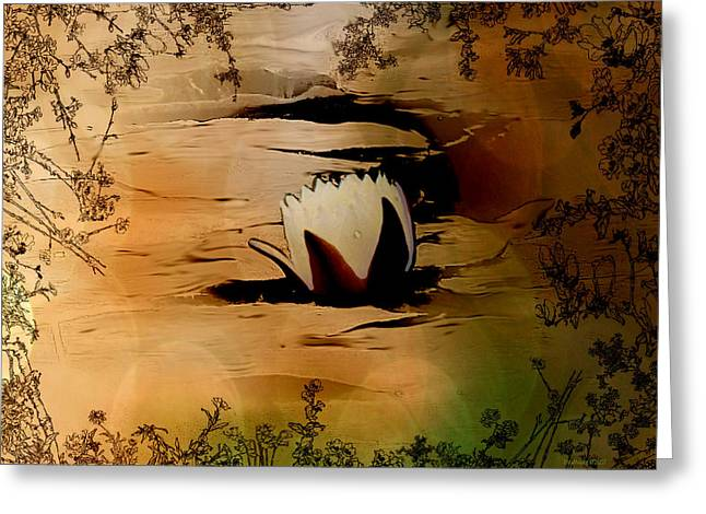 In The Lily Pond - Savannahwildliferefuge-featured In Nature Photography Greeting Card by EricaMaxine  Price