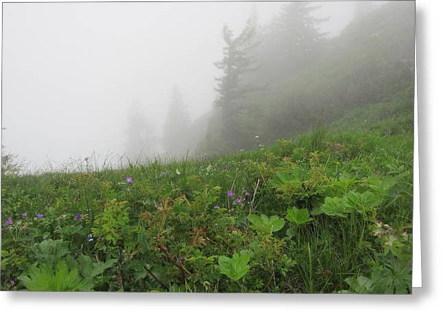 Greeting Card featuring the photograph In The Mist - 1 by Pema Hou