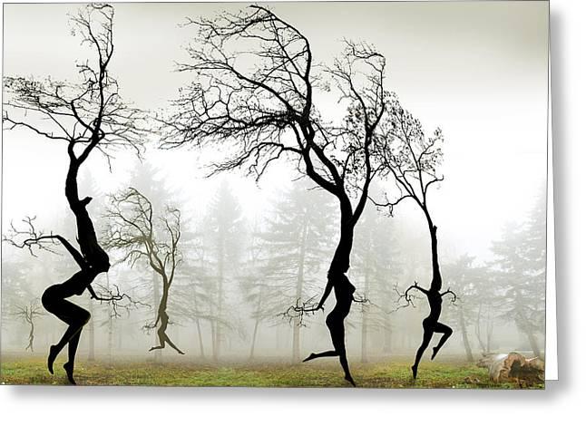 In The Mist Greeting Card by Igor Zenin