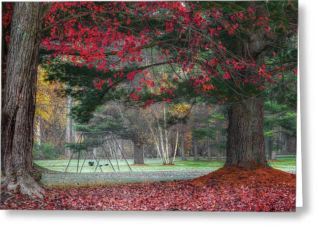 In The Park Greeting Card by Bill Wakeley