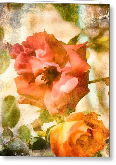 Floral - In The Rose Garden Greeting Card by Barry Jones