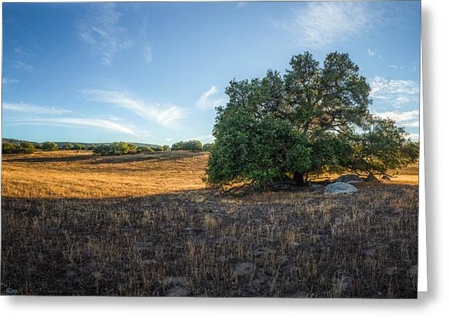 In The Shade Of An Oak Greeting Card by Alexander Kunz