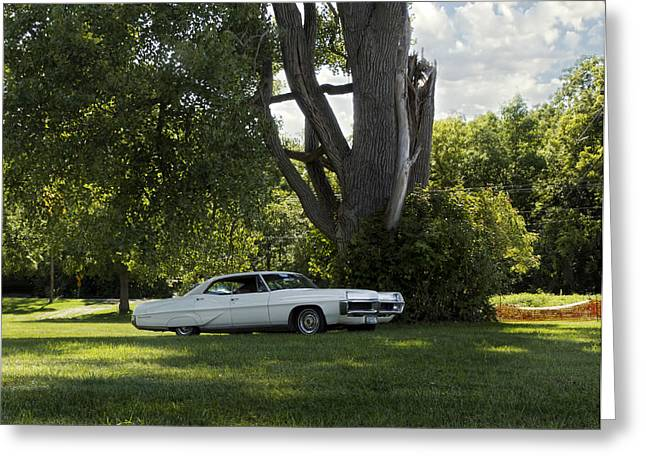 In The Shade Greeting Card by Peter Chilelli