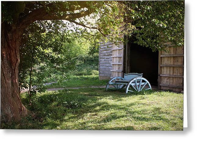 In The Shade Greeting Card by Stephen Norris