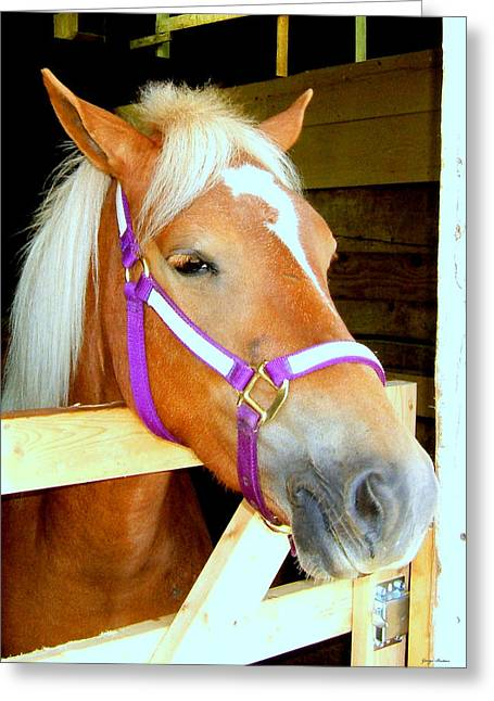 In The Stable 001 Greeting Card by George Bostian