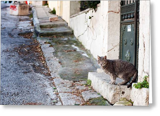 Greeting Card featuring the photograph In The Streets Of Athens by Laura Melis