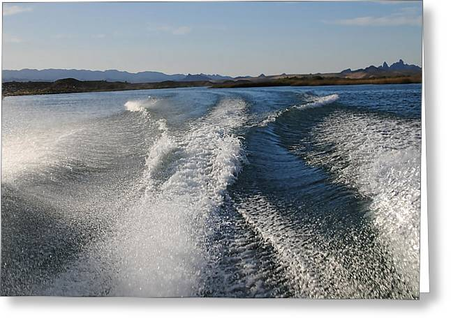 In The Wake Of Lake Havasu Az  Greeting Card