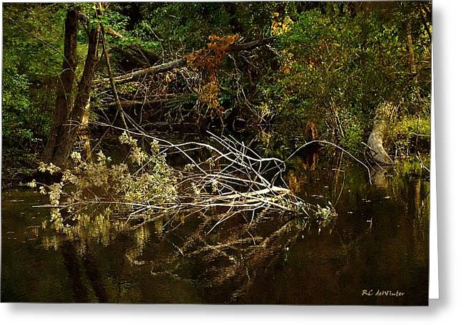 In The Wild Wood Greeting Card by RC deWinter