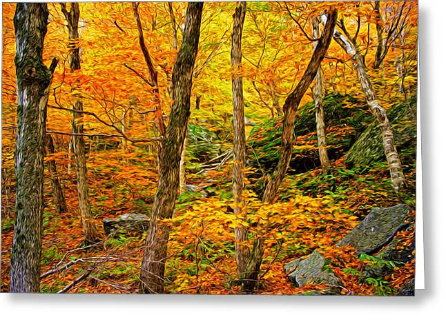 In The Woods Greeting Card by Bill Howard