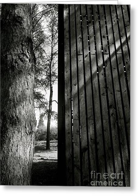 Greeting Card featuring the photograph In This Space #1 by Jacqueline Athmann