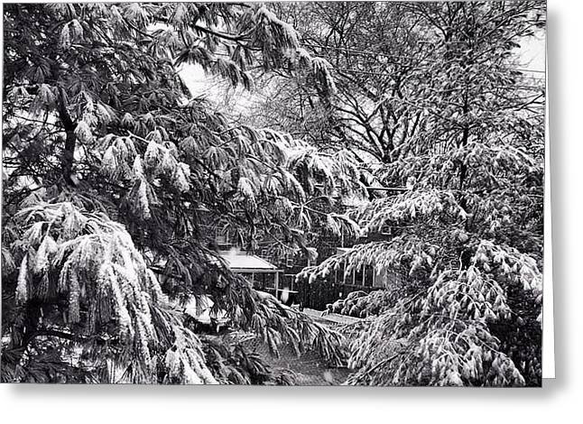 Greeting Card featuring the photograph In Winter by Toni Martsoukos