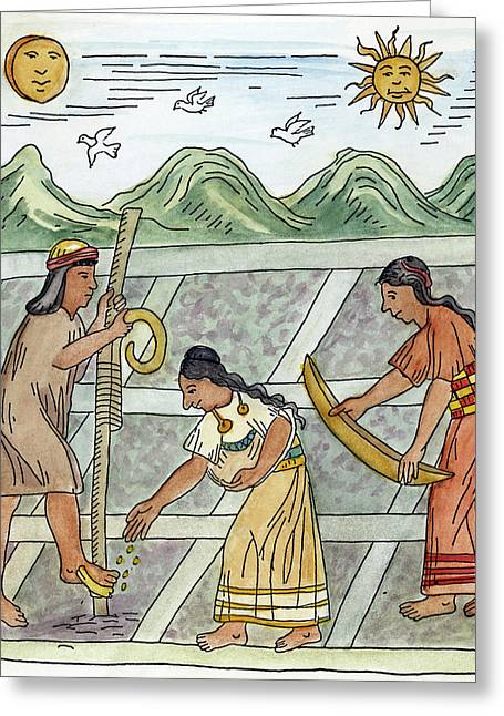 Inca Farmers, 1583 Greeting Card by Granger