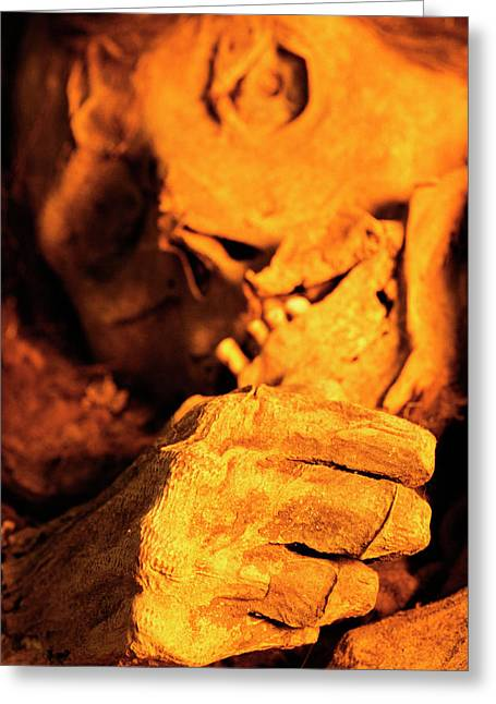 Inca Mummy Greeting Card