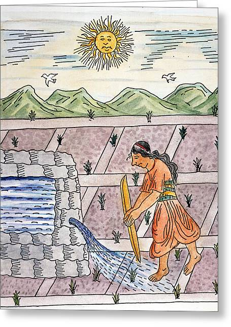 Incan Farmer, C1583 Greeting Card by Granger