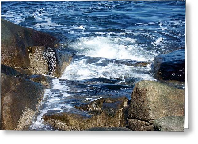 Incoming Tide Greeting Card by Catherine Gagne
