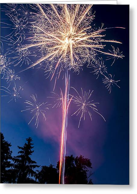 Independence Day 2014 1 Greeting Card