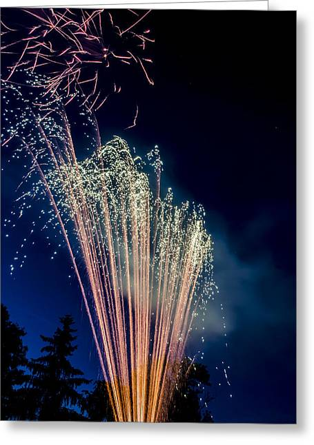 Independence Day 2014 16 Greeting Card by Alan Marlowe