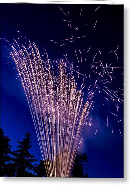 Independence Day 2014 17 Greeting Card
