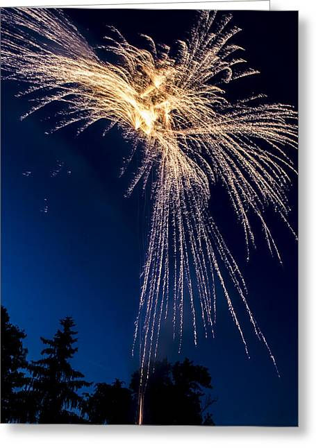 Independence Day 2014 8 Greeting Card