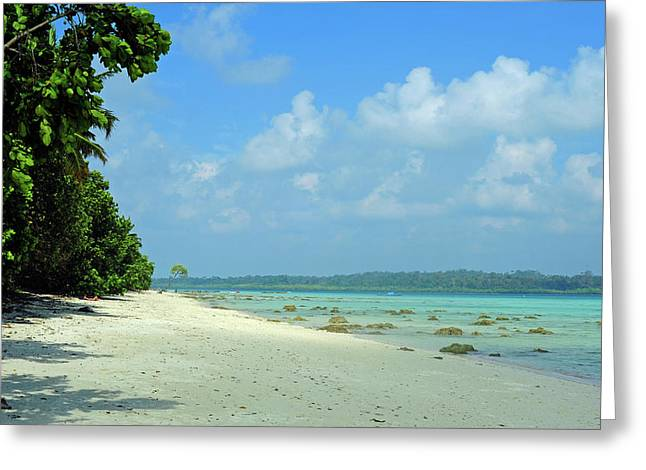 India, Andaman Islands, Havelock, White Greeting Card by Anthony Asael