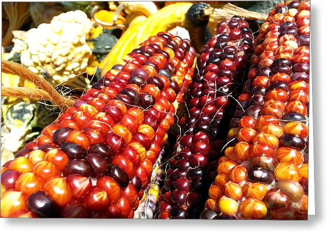 Greeting Card featuring the photograph Indian Corn by Caryl J Bohn