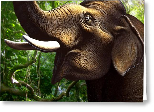 Indian Elephant 1 Greeting Card by Jerry LoFaro