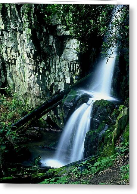 Indian Falls Greeting Card by Rodney Lee Williams