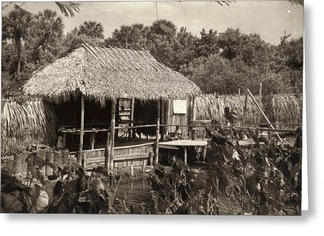 Indian Sod Hut In The Early Century Greeting Card by Pat Mchale