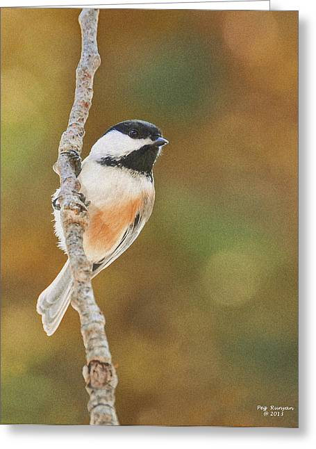 Indian Summer Chickadee Greeting Card