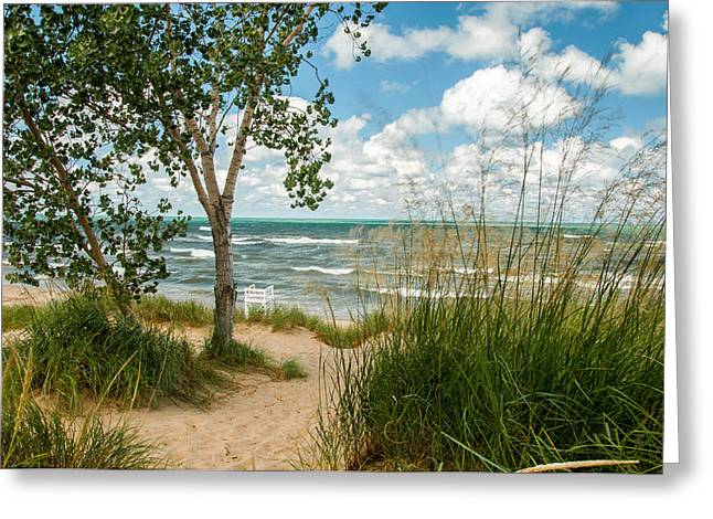 Indiana Sand Dunes State Park Greeting Card