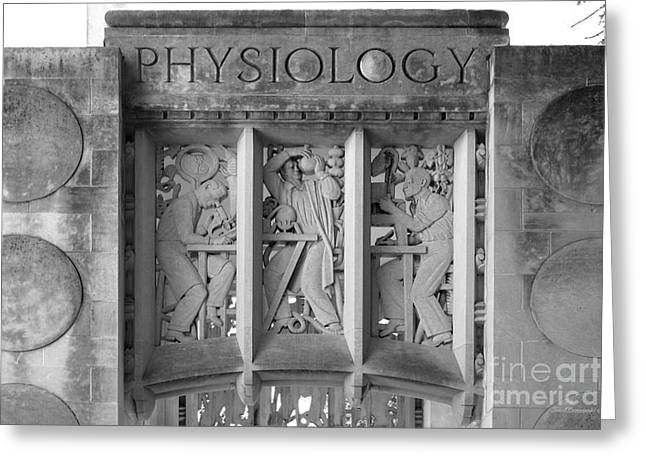 Indiana University Myers Hall Physiology Greeting Card by University Icons