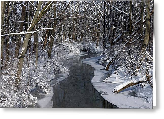 Indiana Winter Greeting Card by Thomas Fouch