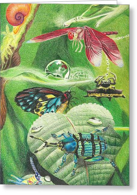 Indigenous Insects Of New Guinea After A Rain Greeting Card