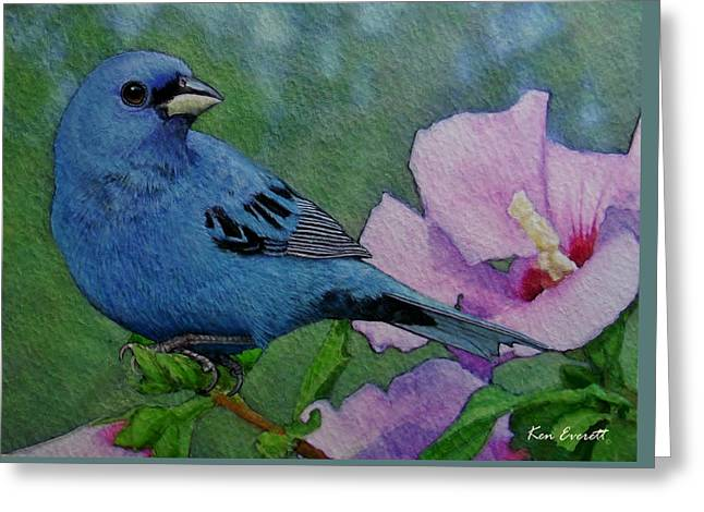 Indigo Bunting No 1 Greeting Card by Ken Everett
