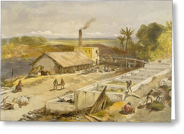 Indigo Factory - Bengal, From India Greeting Card by William 'Crimea' Simpson