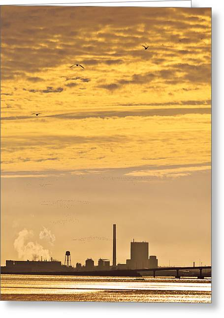 Greeting Card featuring the photograph Industrial Flight by Jon Exley