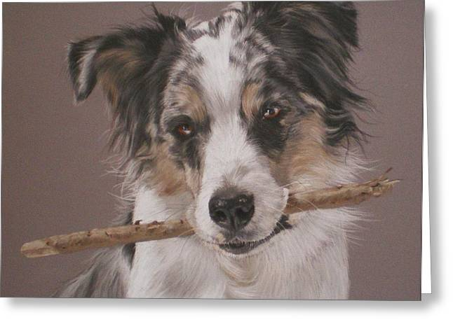 Indy - Border Collie Greeting Card by Joanne Simpson