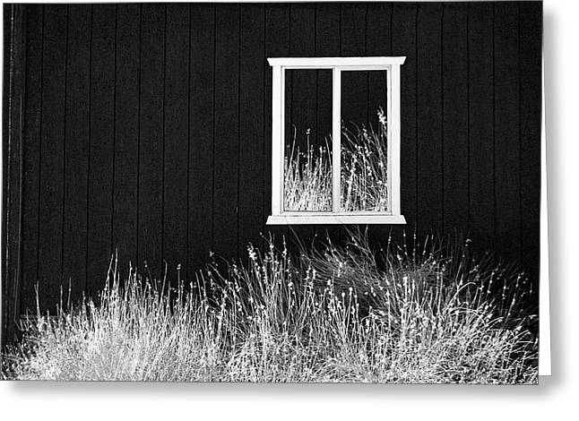 Infrared Barn Greeting Card by Sharon Beth