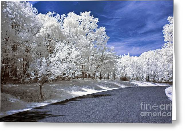 Infrared Road Greeting Card