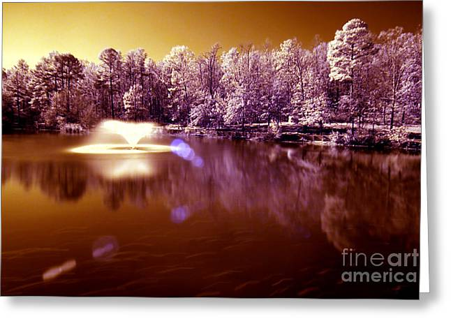 Infrared Study #242 Greeting Card by Floyd Menezes