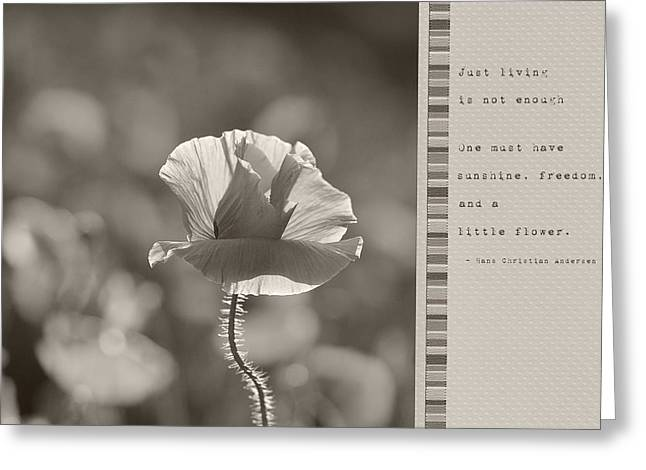 Ingredients For Life  Greeting Card by Lisa Knechtel